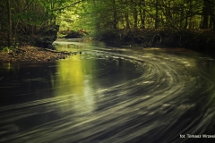 Przyroda - Krajobraz 025a
