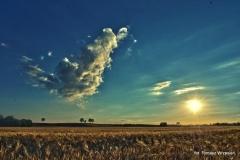 Przyroda - Krajobraz 052