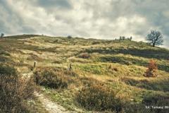 Przyroda - Krajobraz 056