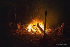 Urodziny w Lesie [Grudzień 17] 008